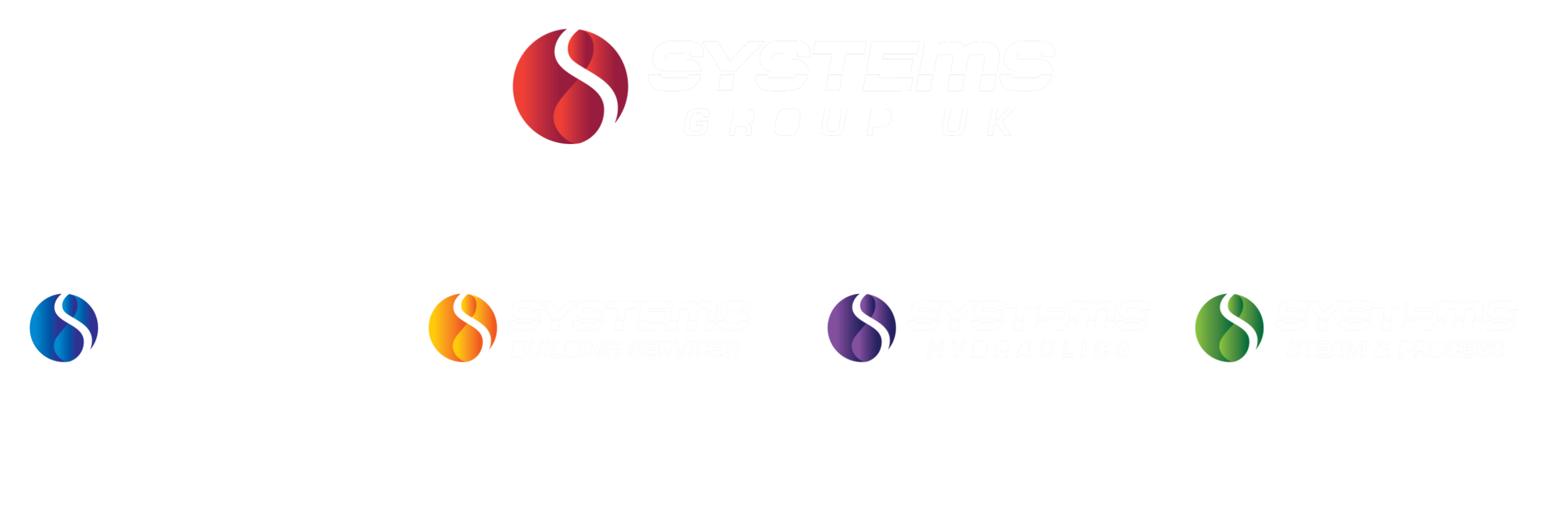 Systems Group Organisation Structure
